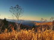 Image for Black Balsam Knob