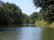 Image for Elm Fork Trinity River