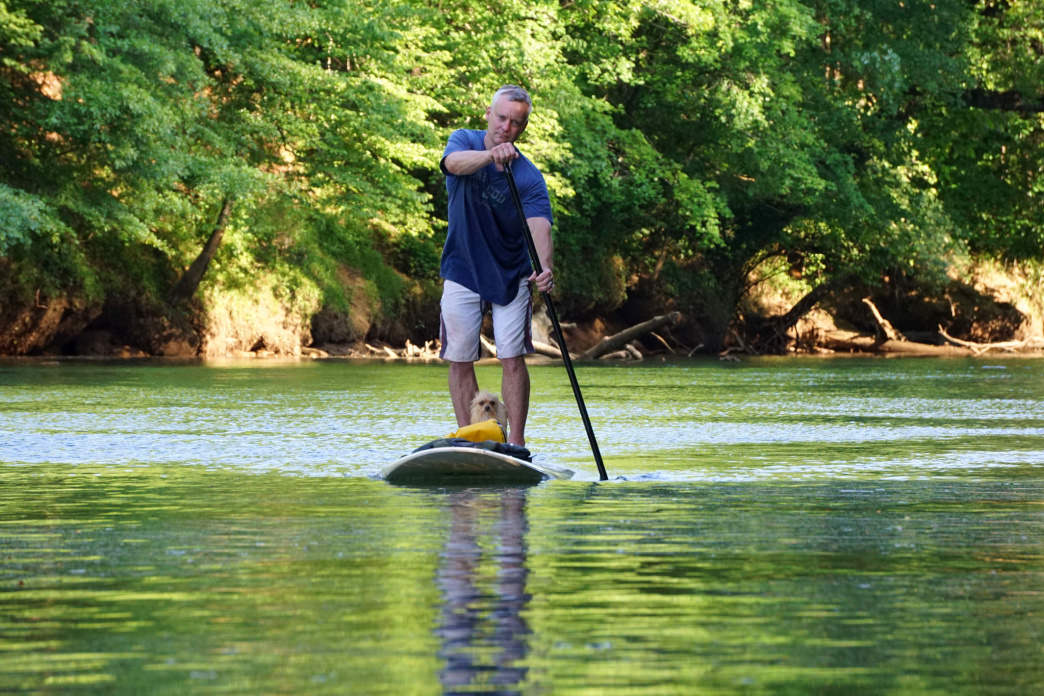 A SUP rider and his dog go for a ride on the Chattahoochee River.