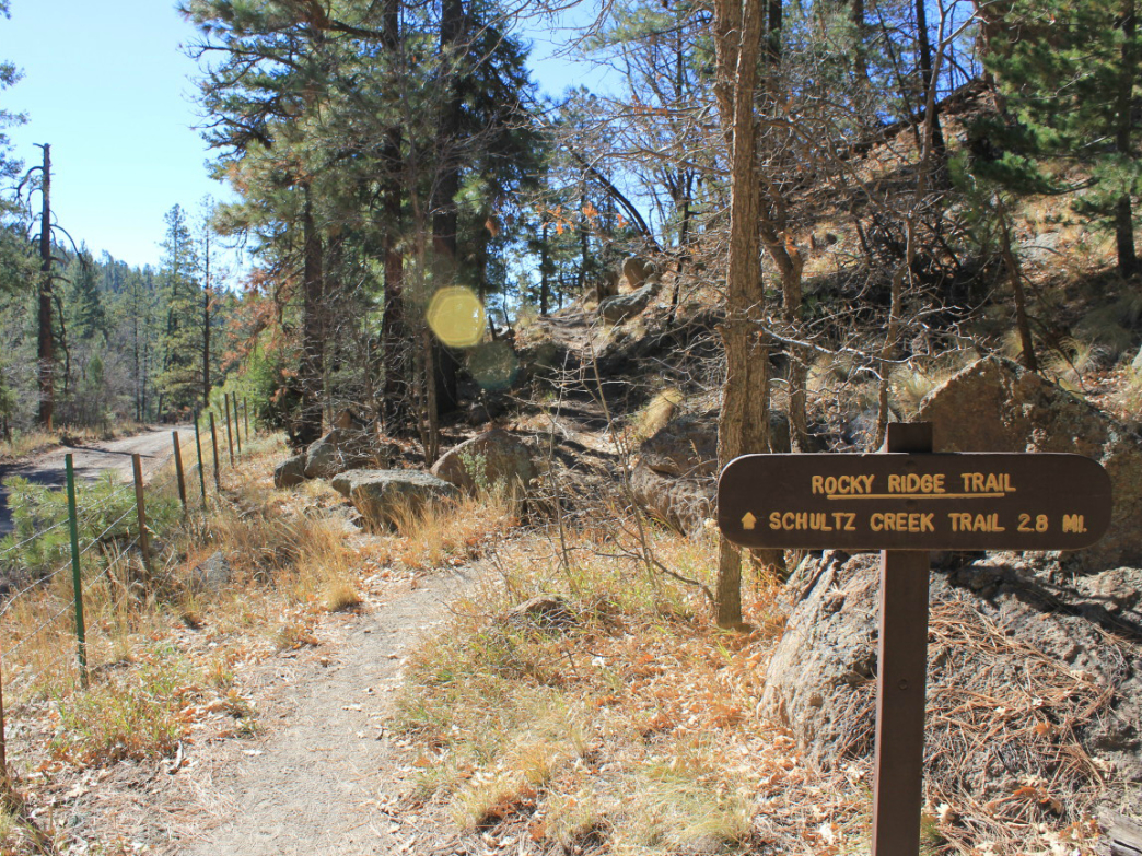 Rocky Ridge Trail near Mt. Elden