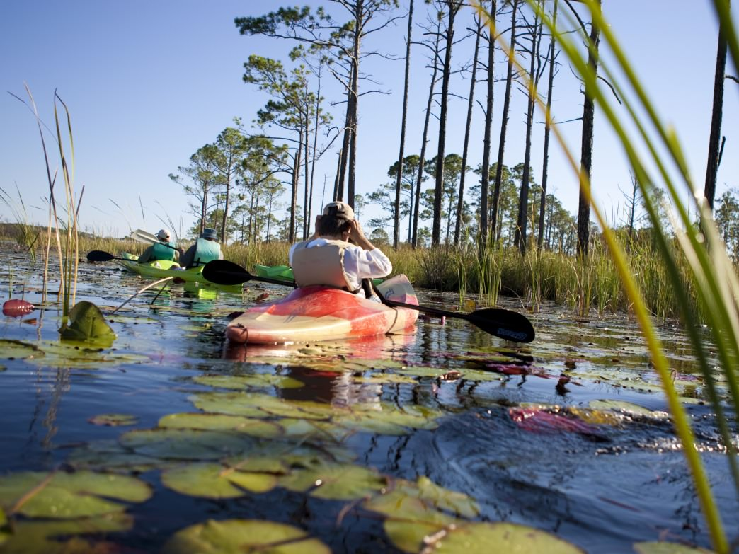 Kayaking on Western Lake, Florida.