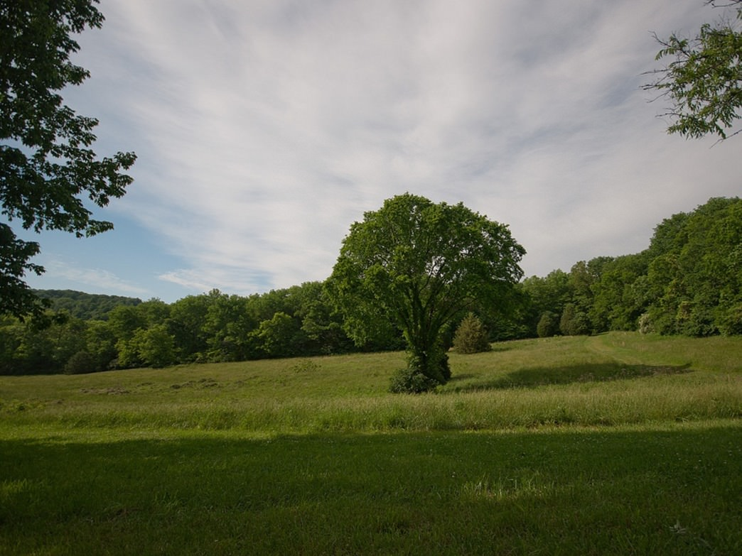 Percy Warner Park has something for everyone, with meadows, singletrack, and even waterfalls to enjoy.