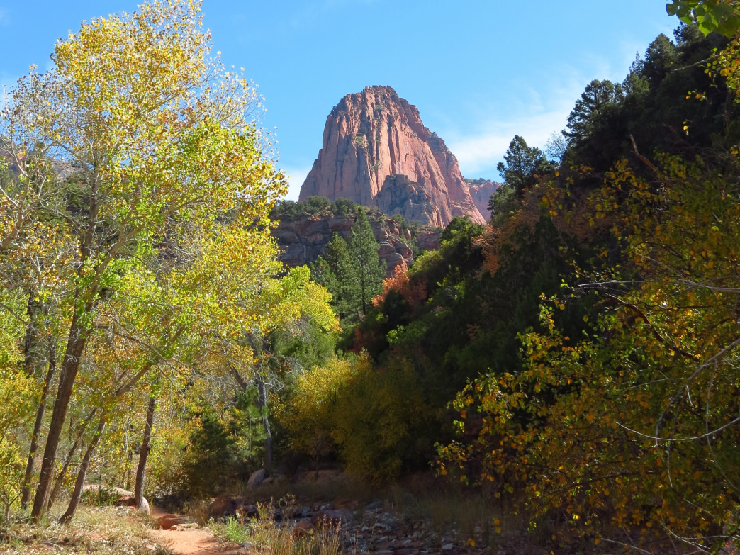 A hike on Taylor Creek Trail through Kolob Canyon, Zion National Park, Utah.