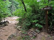 20170621_Tennessee_Chattanooga_North Chick Blue Hole_Hiking4