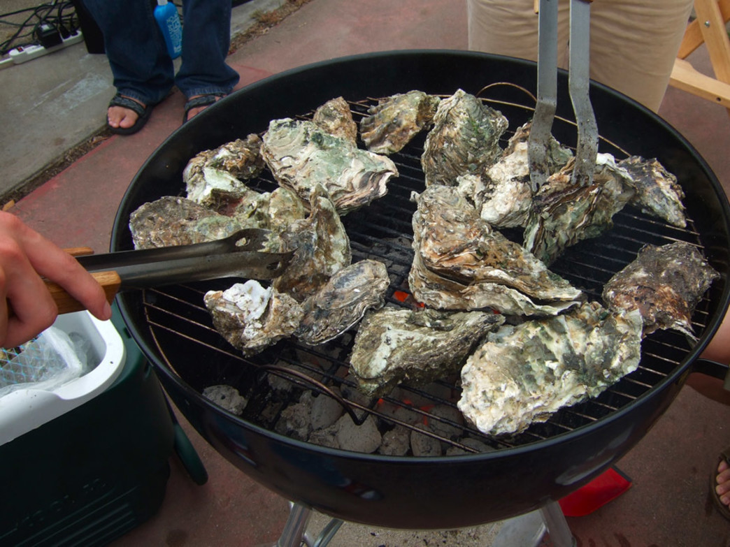 Holy City How To Hosting An Oyster Roast