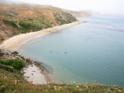 Image for Point Reyes National Seashore Kayaking