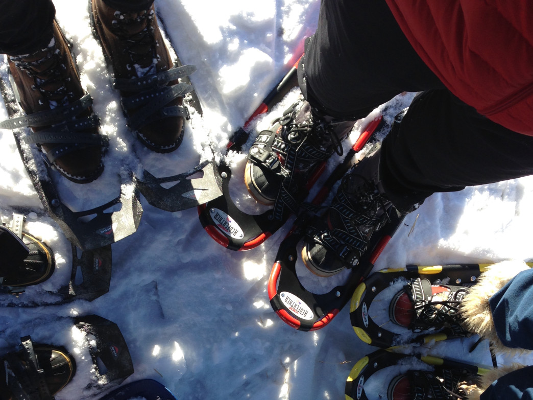 Explore the snowshoe trails along the Mississippi River.