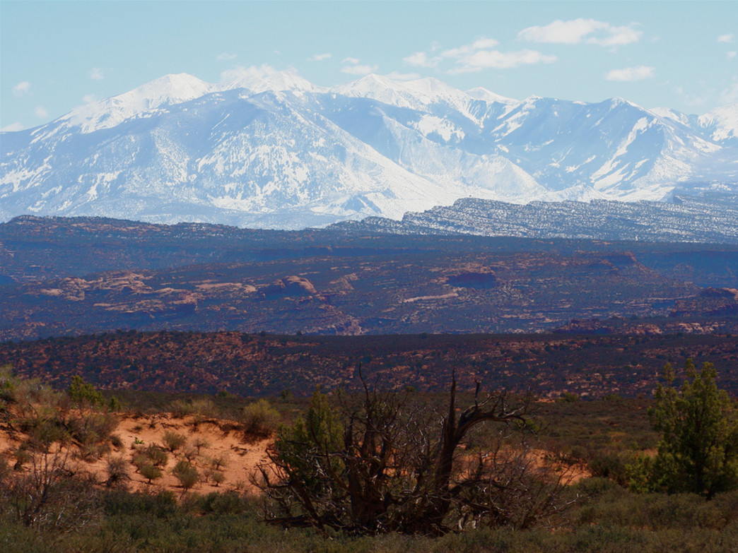 High above the desert, the mountains of southern Utah offer cool temps year round.