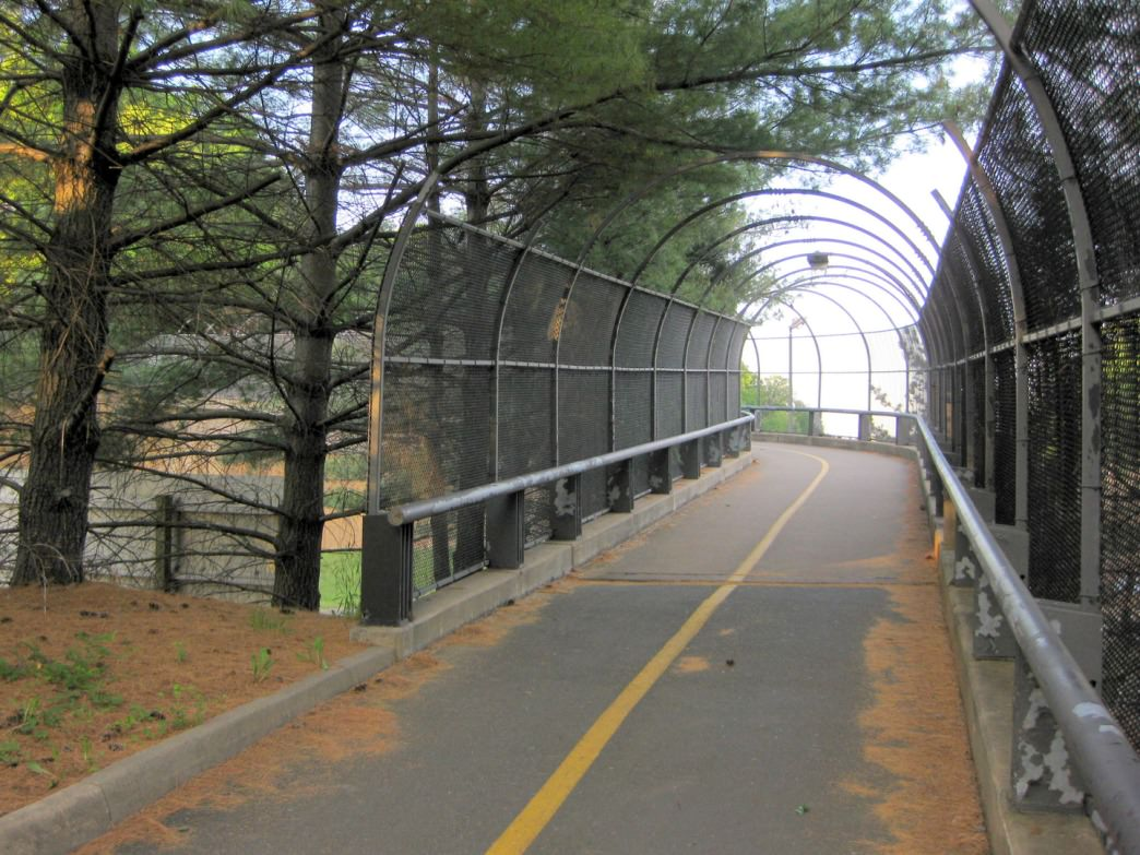 A bridge along the Custis Trail.