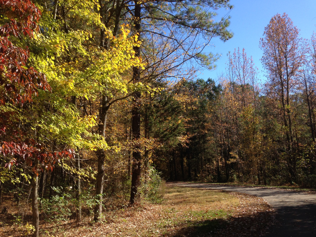 The Wade Mountain Preserve has 11 miles of trail.