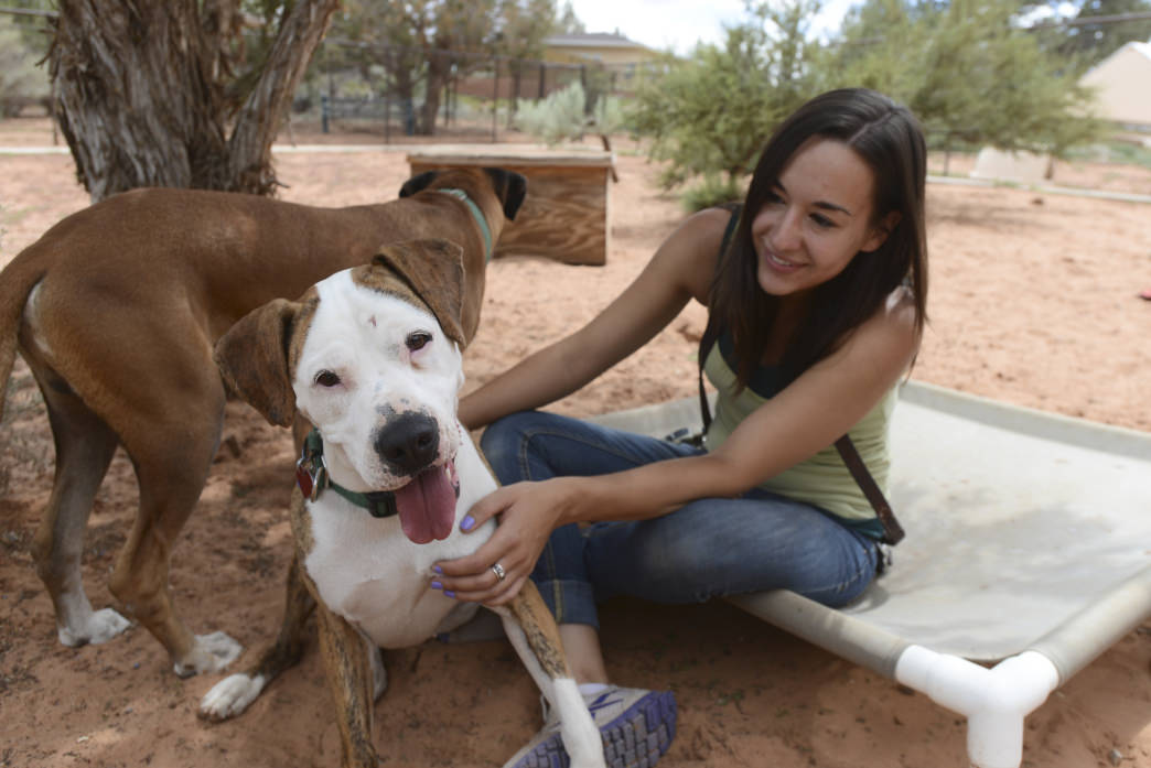 Kanab Best Friends Animal Sanctuary is a great place to visit with great dogs... and maybe take one home!     Southern Utah Office of Tourism
