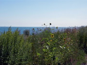 Image for Northerly Island