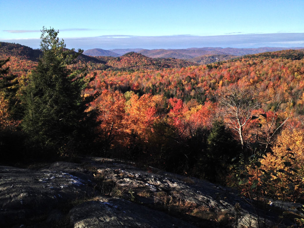 West Bolton's hidden gem for viewing fall foliage, Libby's Outlook.