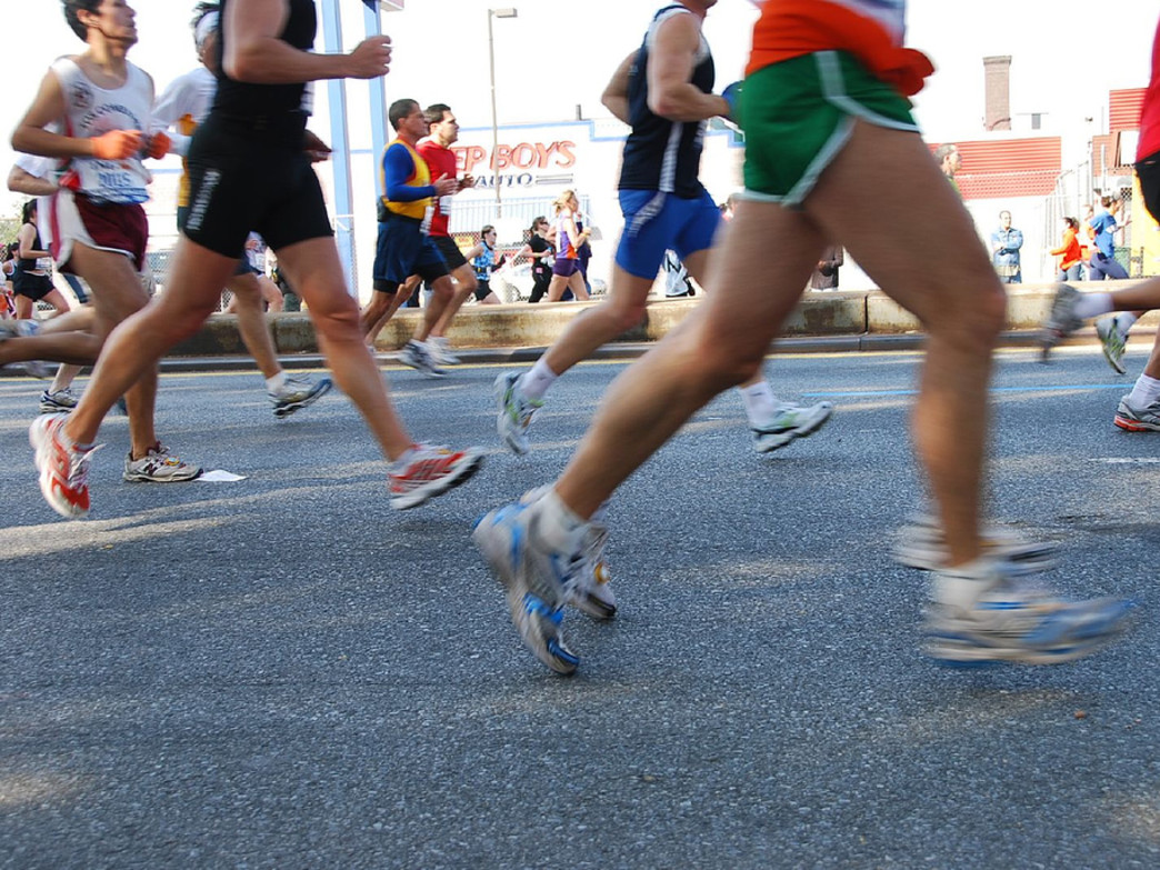 Spectator's guide to the nyc marathon.