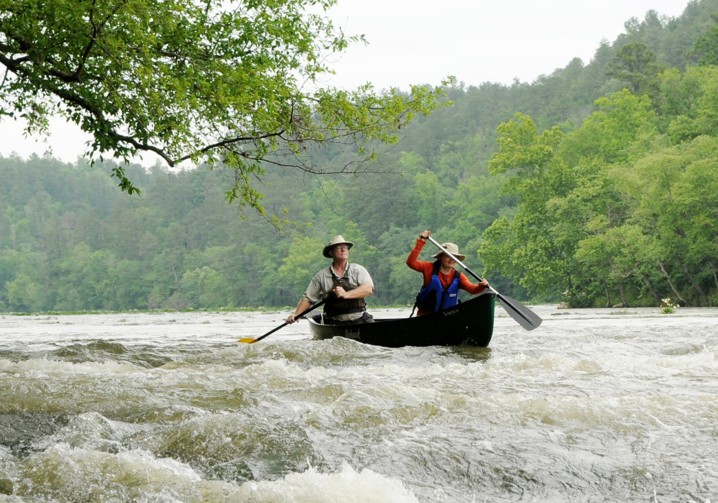 Kayak or canoe the Cahaba river.