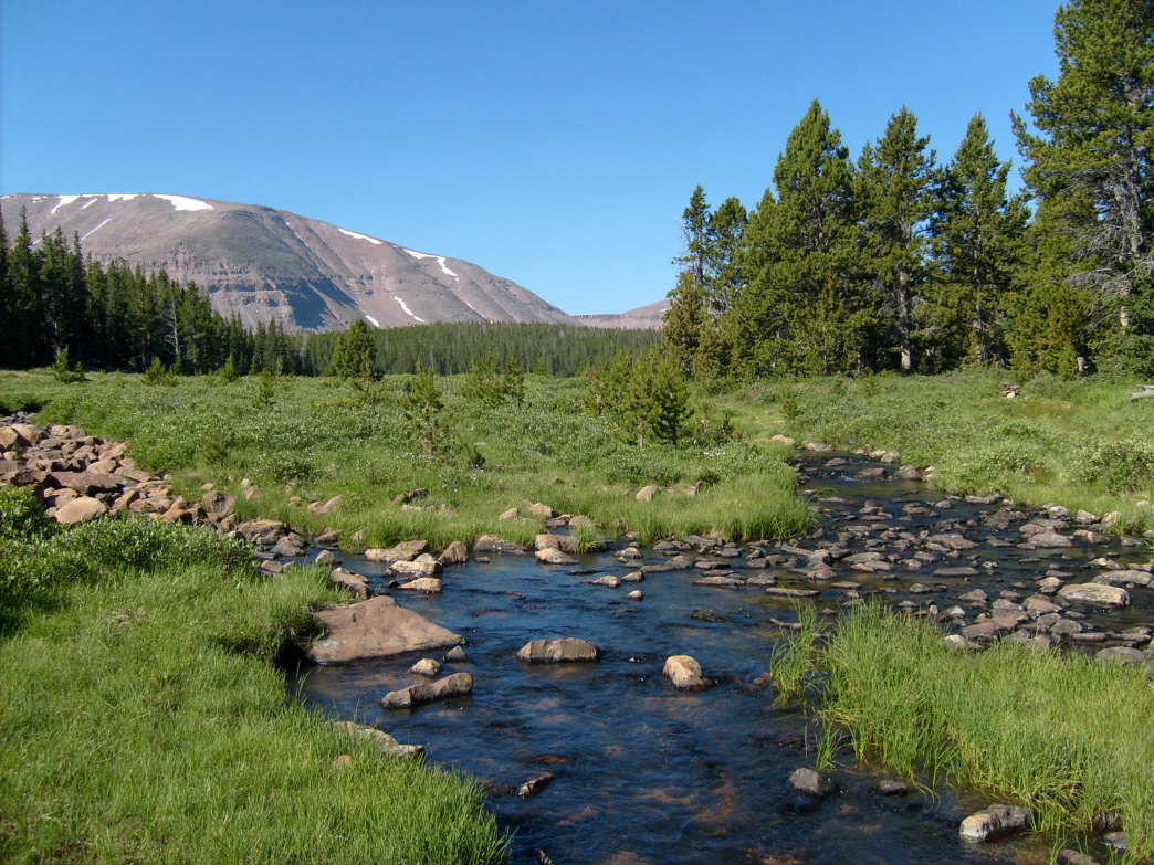 The High Uintas Wilderness is a great place for experienced hikers looking to escape the crowds.
