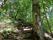 20170710_Short Springs State Natural Area - Machine Falls Loop_Hiking10