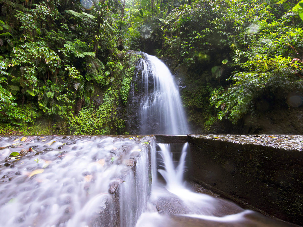 4448bf20874 Exploring the Alluring Tropical Waterfalls of Martinique