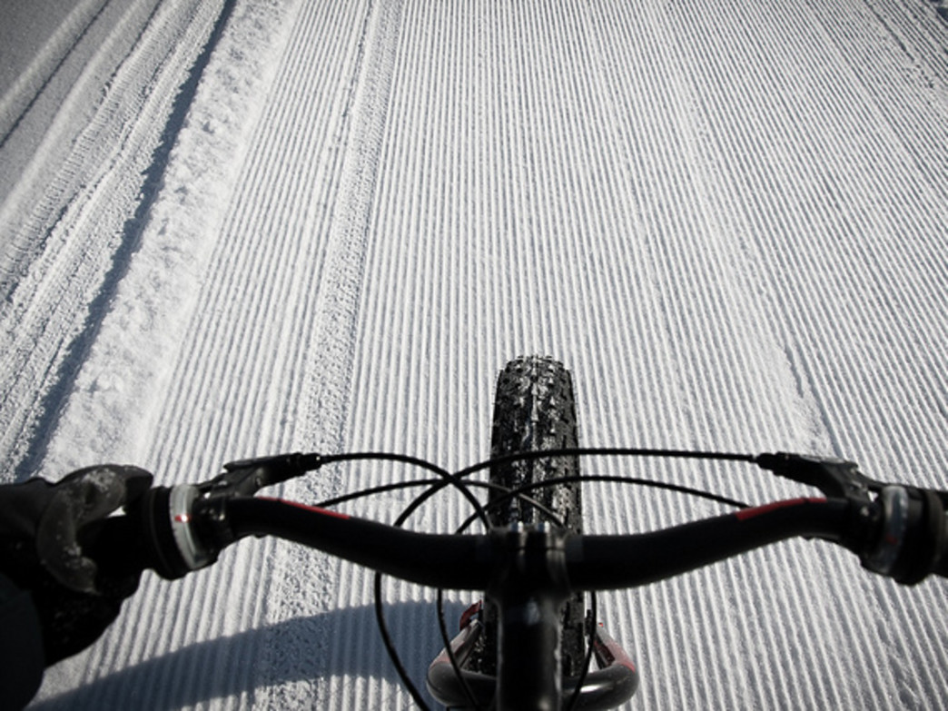 Groomed trails make for easy beginner fat biking.