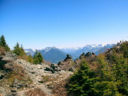 Image for Mount Si