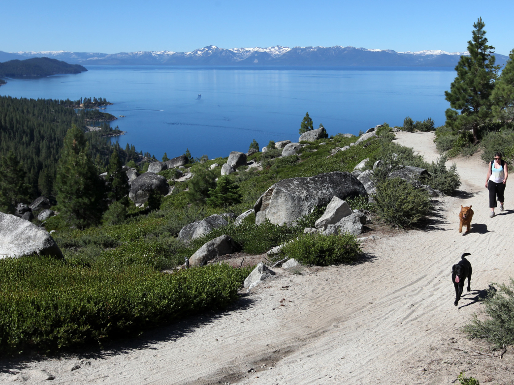 Views of Lake Tahoe from Tunnel Creek on Monday, July 25, 2011, in Incline Village, Nev. .Photo by