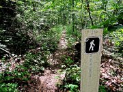 20170623_Tennessee_Chattanooga_Skyuka Springs on Lookout Mountain_Trail Running5
