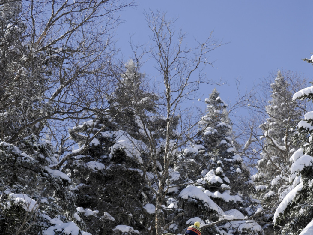 Getting the goods at Mad River Glen, the first skier-owned cooperative in the U.S.