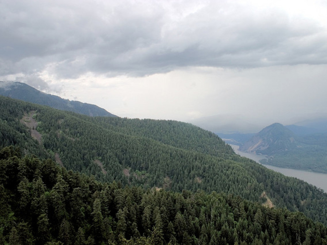 The summit of Mount Defiance is generally considered to be the tallest point in the Columbia River Gorge.