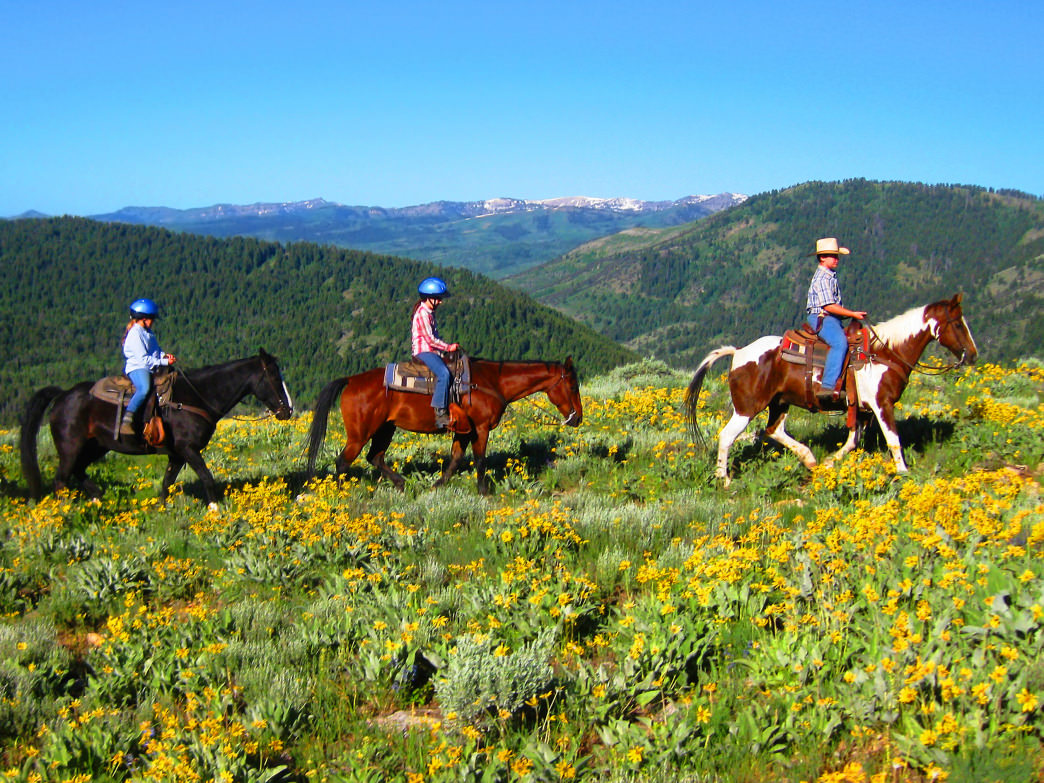 People come from all over to rent horses to explore the beautiful mountains and vistas in Logan Canyon.