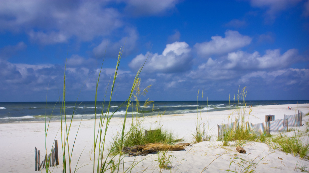 Outdoor Adventures Amp Things To Do In Gulf Shores Al
