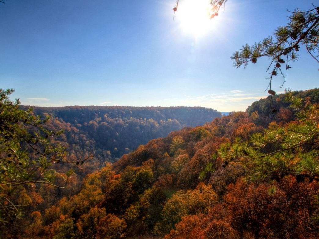 Views from the Fiery Gizzard Trail on a late October day