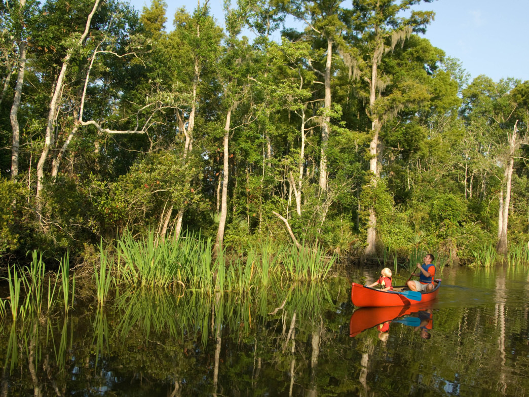 Canoeing on Mississippi's Pascagoula River.