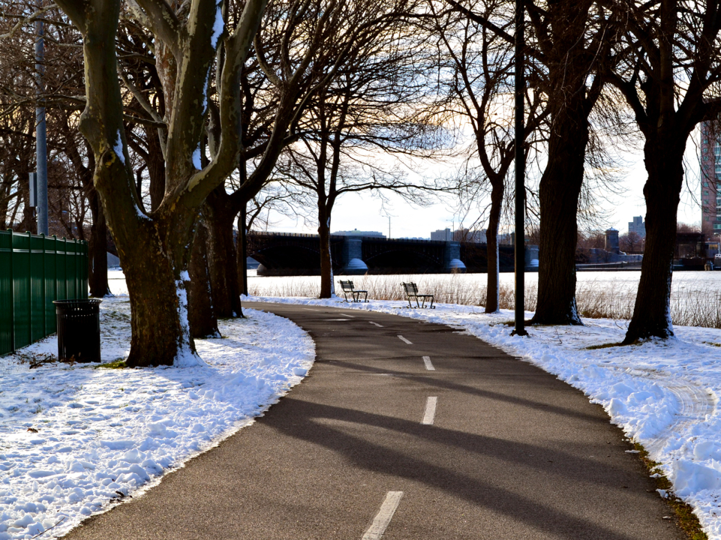 The bike path along the Charles River