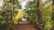 Image for Perkiomen Trail - Trail Running