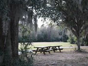 Image for Palmetto Islands County Park