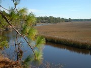 Image for Awendaw Passage of the Palmetto Trail