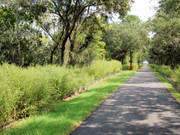 Image for West Ashley Bikeway