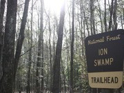 Image for I'on Swamp