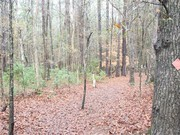 Image for Wannamaker County Park Running