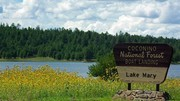Image for Upper Lake Mary
