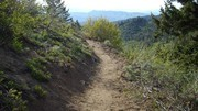 Image for Around the Mountain Trail