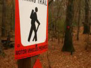 Image for Saline Bayou Hiking Trail