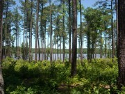 Image for Falls Lake Trail: 60 miles (with 24 shorter options)