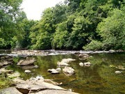Image for Upper Haw River: Shallow Ford Natural Area