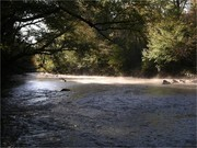 Image for Uwharrie River (Section 2)