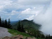 Image for Mount Mitchell