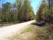 Image for Umstead State Park: 13 miles of bike & bridle trail
