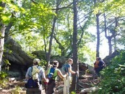 Image for Hanging Rock State Park: Tory's Den Trail, with option