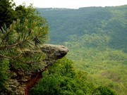 Image for Hawksbill Crag/Whitaker Point