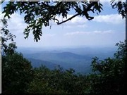 Image for Springer Mountain